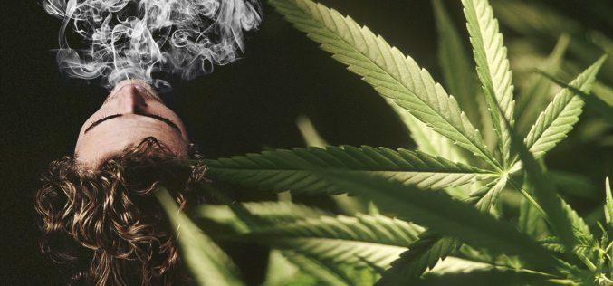 Get to Know the 5 Common Marijuana Flavors